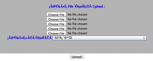Upload Files to Server