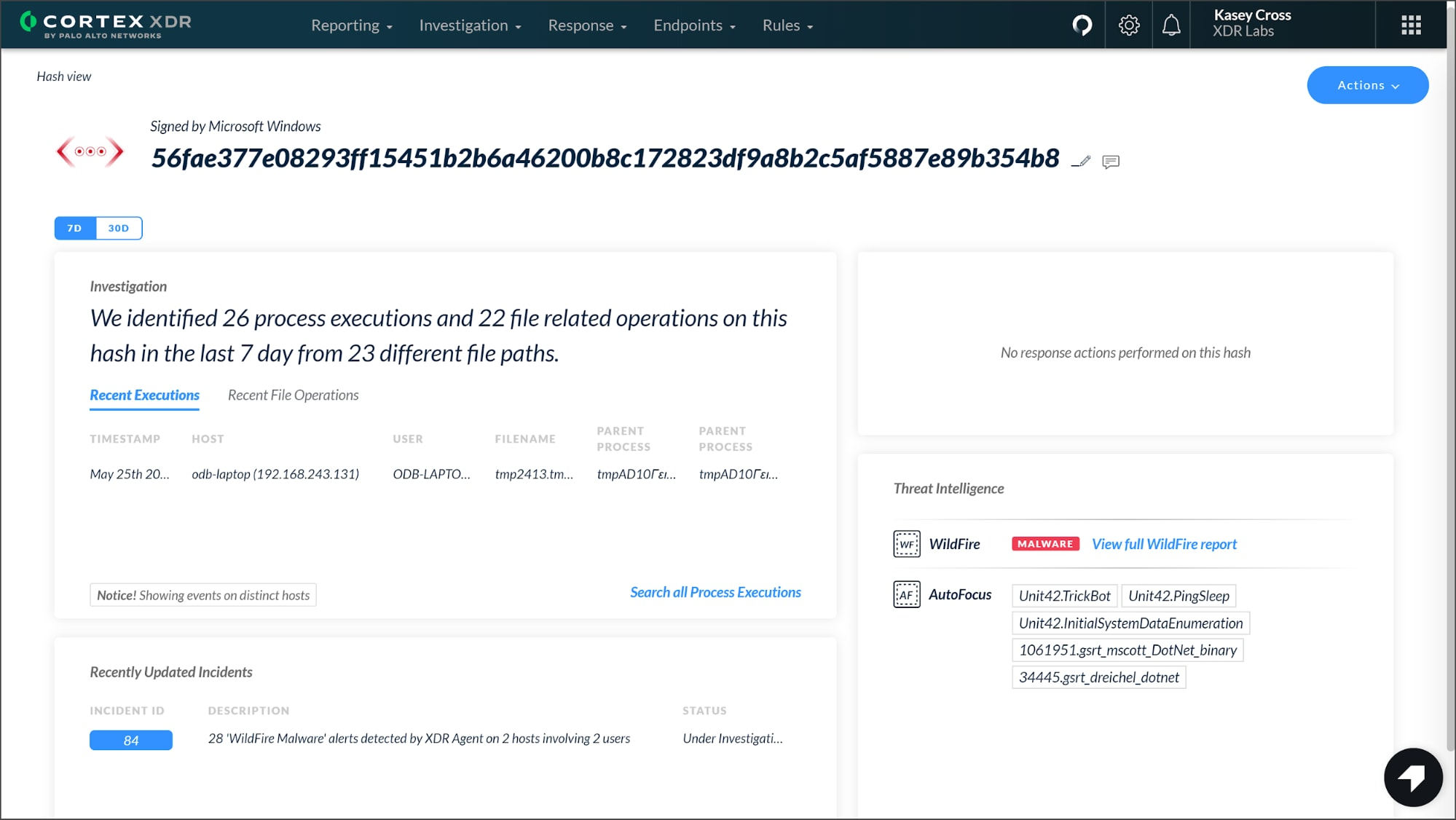 This screenshot shows the Hash View in Cortex XDR 2.4